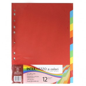 Index kart. 12 boja za registr.A4 Pigna 0223440 P40/120
